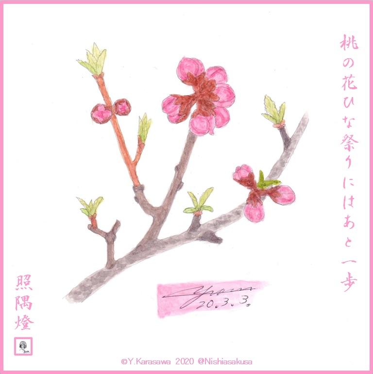200303桃の蕾LRG