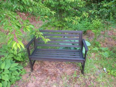 200530塗装された空き地のベンチ