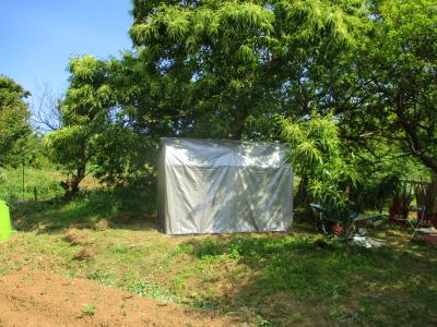 200602収納テント設置1