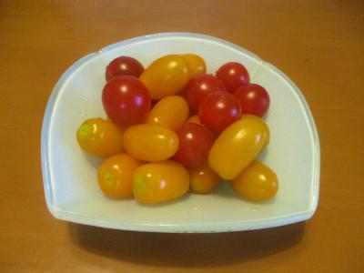 200628ミニトマト