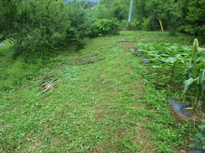 200703北側法面の草刈り