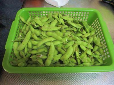200721収穫した枝豆