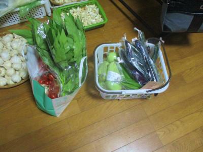 200731野菜の出荷