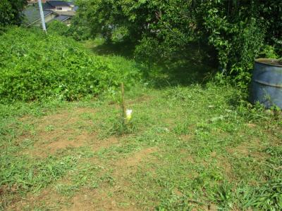 200805耕作放棄地との境の草刈り