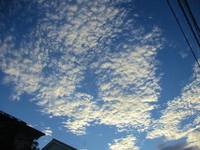 200811朝の空