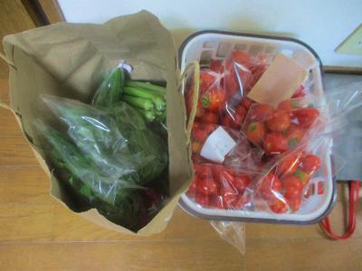 200824出荷野菜