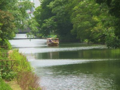200605米子橋北を北進する堀川遊覧
