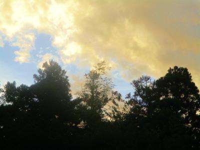 200902朝の空