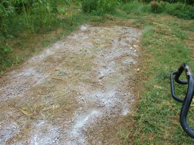 200904トウモロコシ跡地等石灰置き