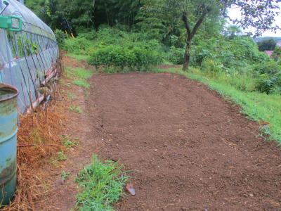 200912雨後の畑1