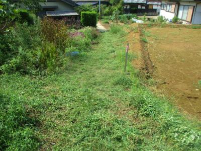200919草刈り1