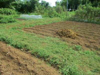200919堆肥置き4