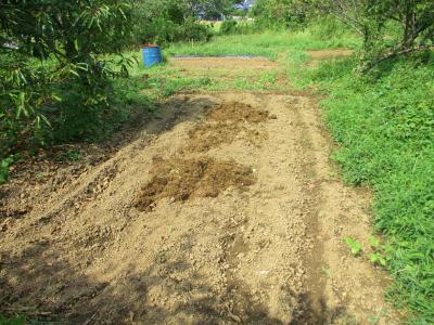 200919堆肥置き3