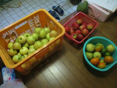 200921貰って来たリンゴなど