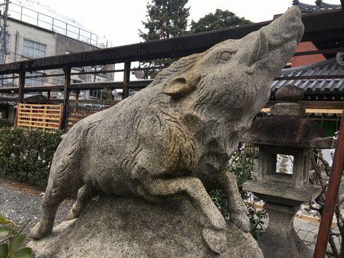 禅居庵・狛猪(境内)_H31.02.08撮影