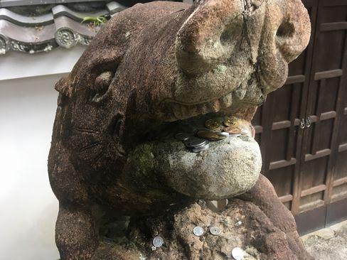 南禅寺・聴松院の狛猪(阿形)_H31.02.10撮影
