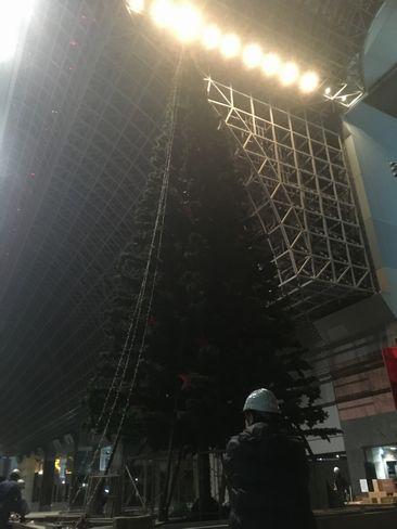 解体中のクリスマスツリー_R01.12.26撮影