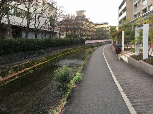 平安神宮大鳥居辺りから祇園白川の遊歩道__R01.12.27撮影