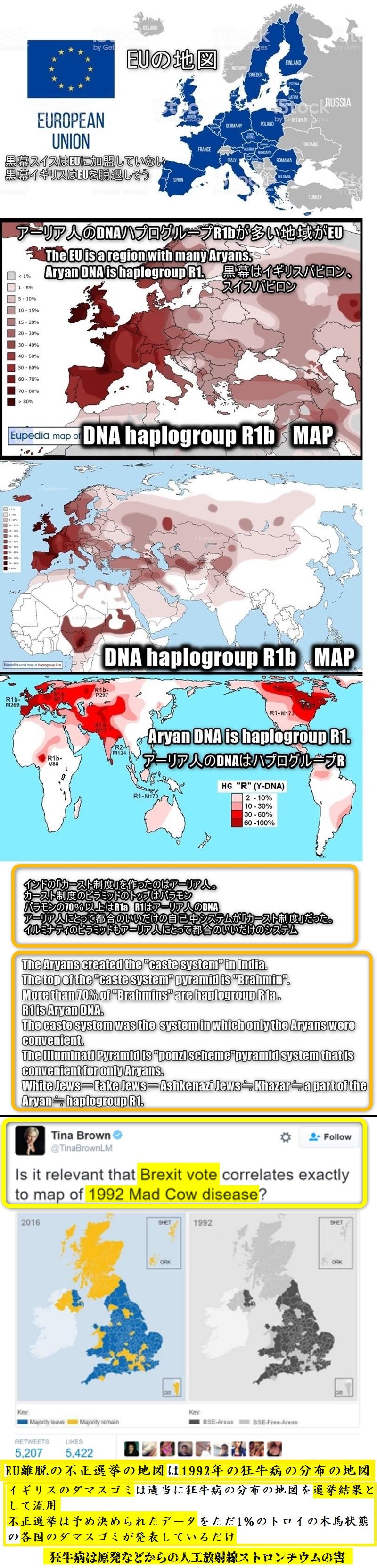 アーリア人の極一部がハザール人、白色偽ユダヤ人アシュケナージユダヤ人  haplogroupR White Jews Fake Jews