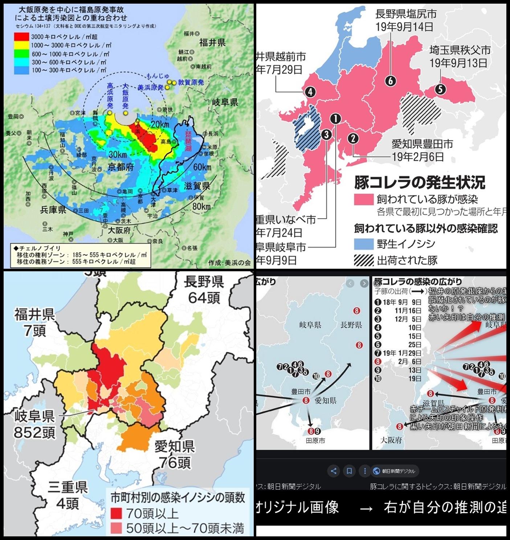 豚コレラの分布 福井県の原発銀座からの放射線の漏洩事故が誤魔化されている可能性大