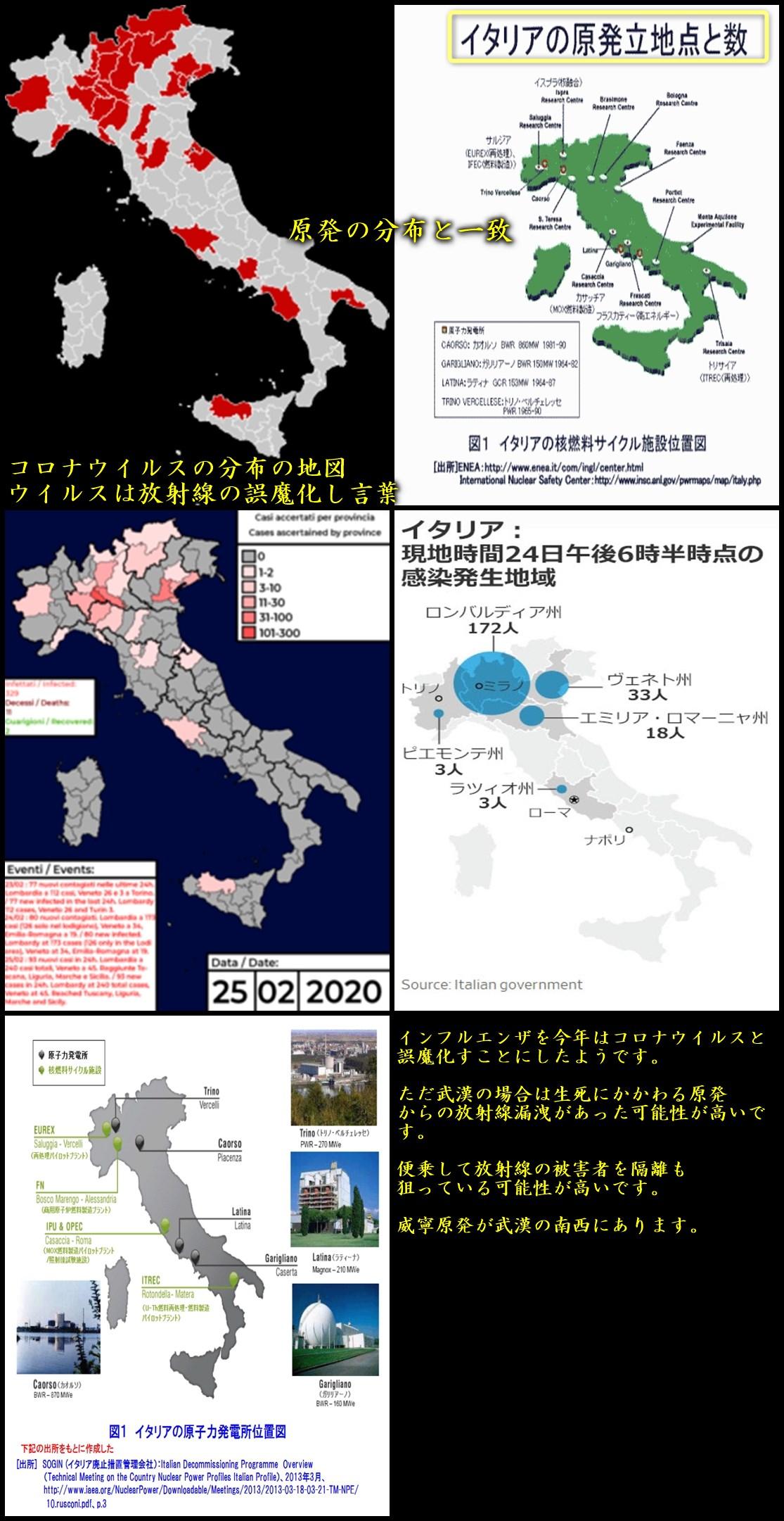 イタリアのコロナウイルス詐欺は原発からの放射線の漏洩 コロナウイルスはインフルエンザウイルスと同じもの ウイルス=放射線の誤魔化し言葉21