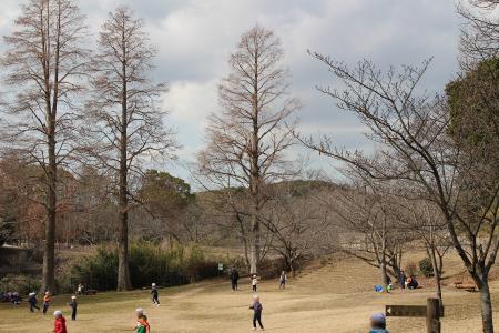 奥須磨公園9