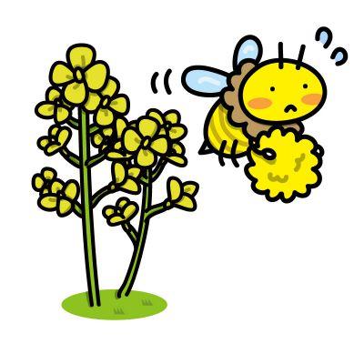 働くミツバチ イラスト