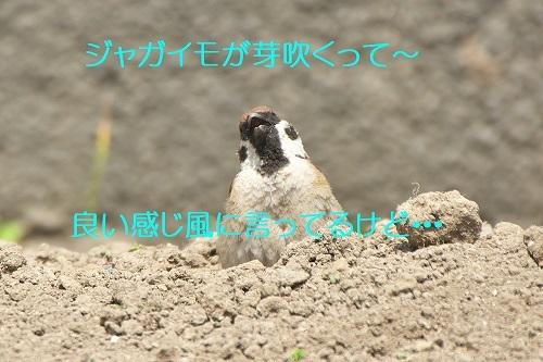 010_20200610210306d80.jpg