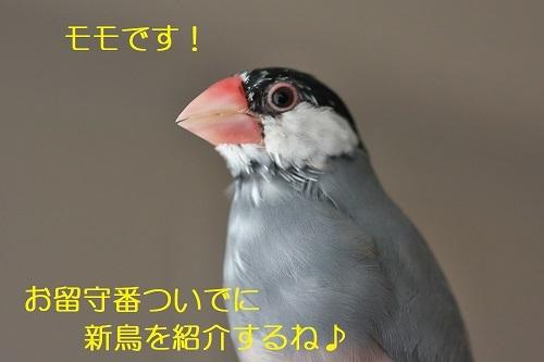 010_2020070900044899f.jpg