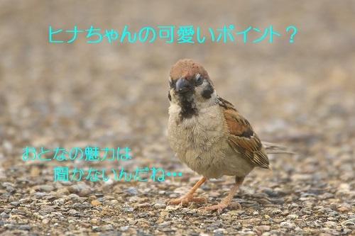 010_20200713213322acb.jpg