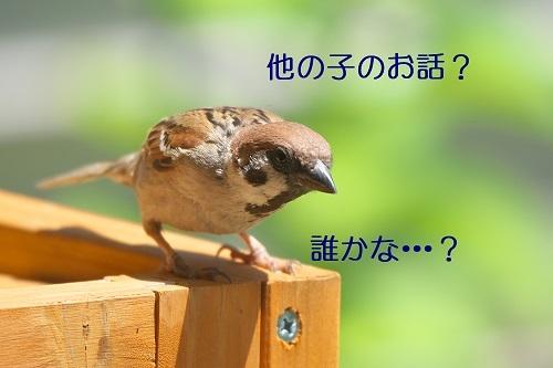 030_20200705003432e81.jpg