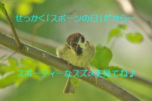 050_20200724222019122.jpg