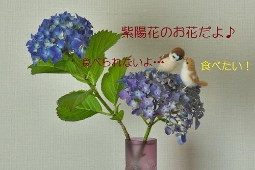 090_20200529214338b27.jpg