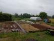 雨の後の畑