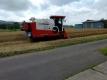 家の西側の麦刈