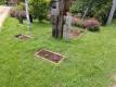 芝生花壇①