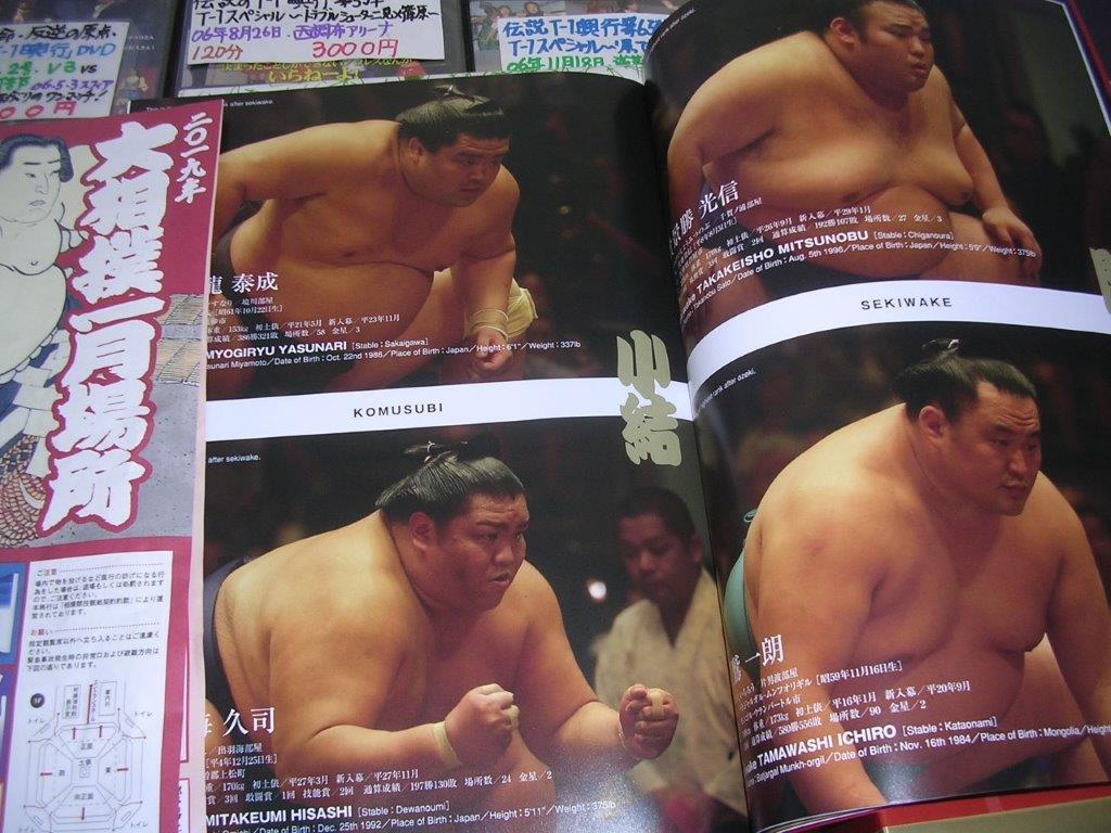 大相撲平成31年1月場所パンフ3 貴景勝