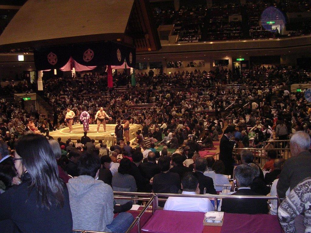 大相撲平成31年1月場所1 十両