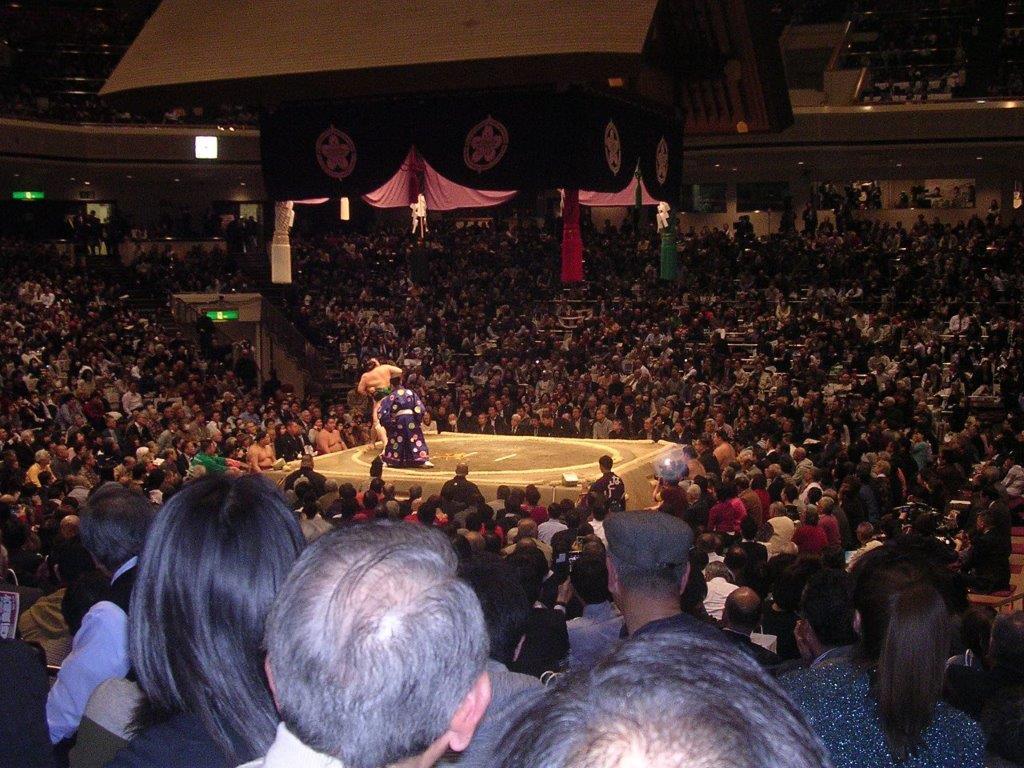 大相撲平成31年1月場所15
