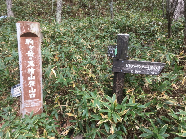 1353駒ヶ岳登山口下山