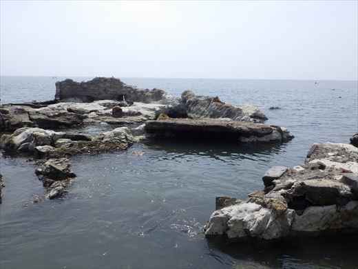 長者ヶ崎で釣り (15)