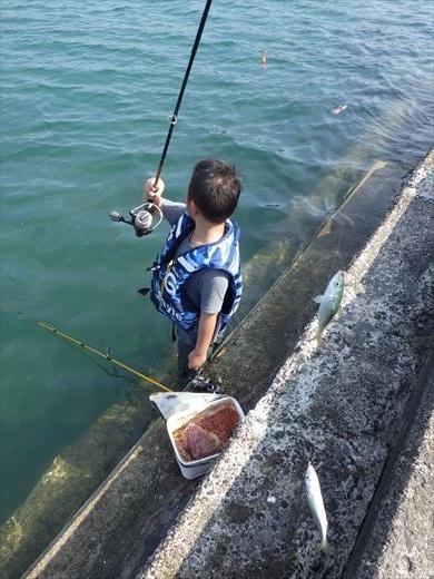長者ヶ崎で釣り (24)