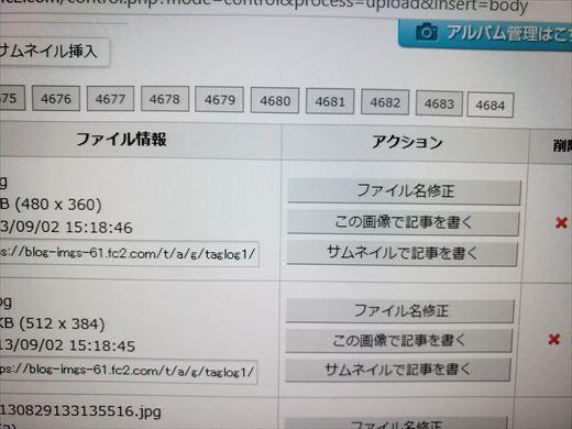 ブログ3000記事 (3)