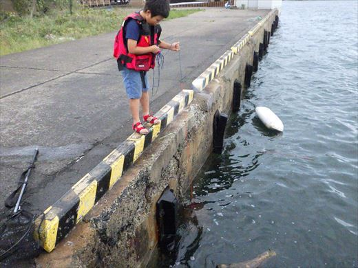 鹿島港 (20)