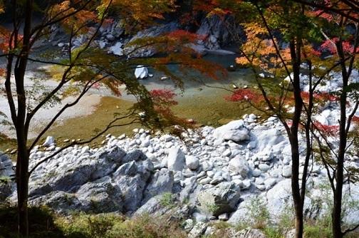 ゴロンゴロンと白い石