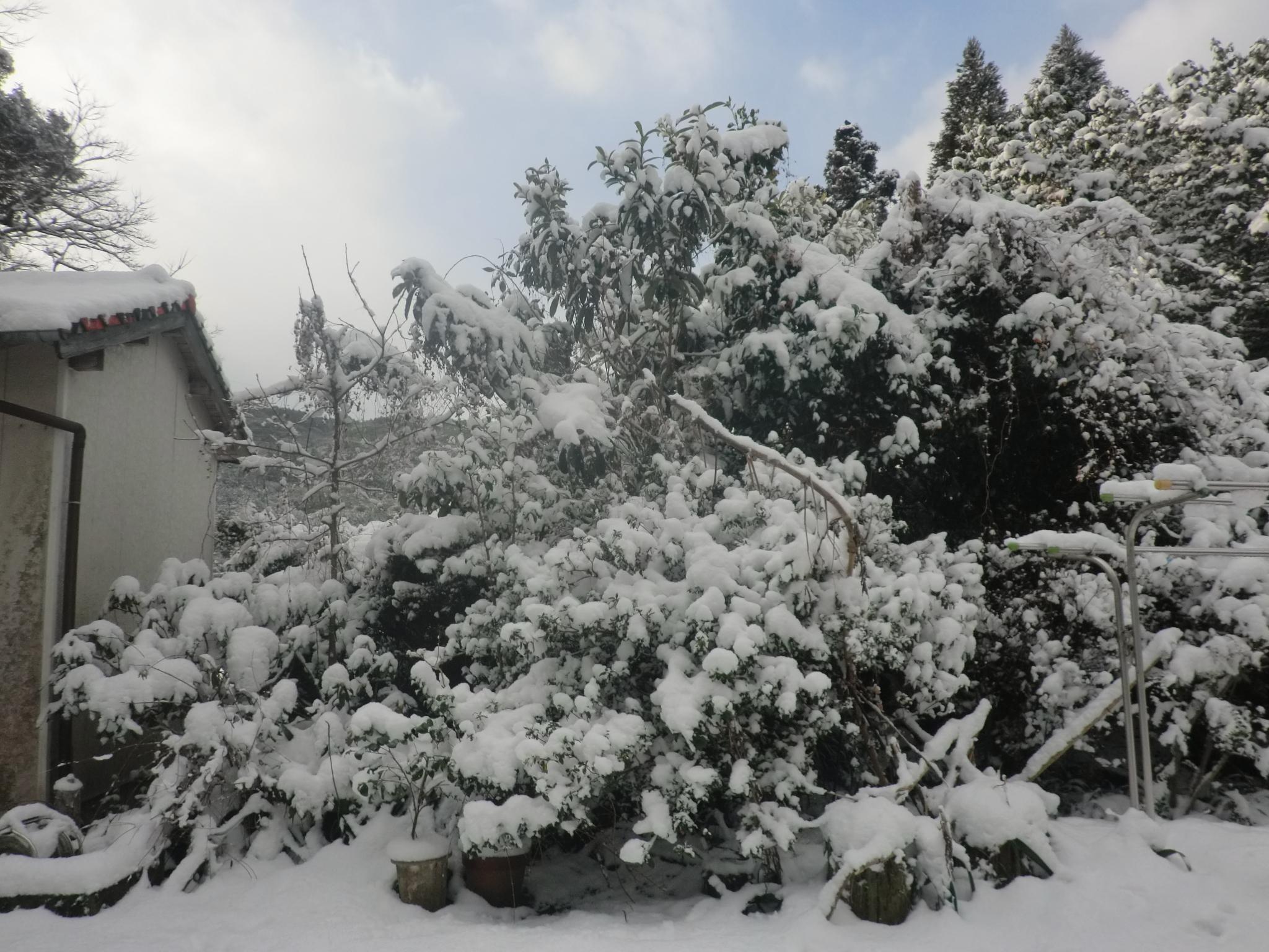 雪2018.2.13