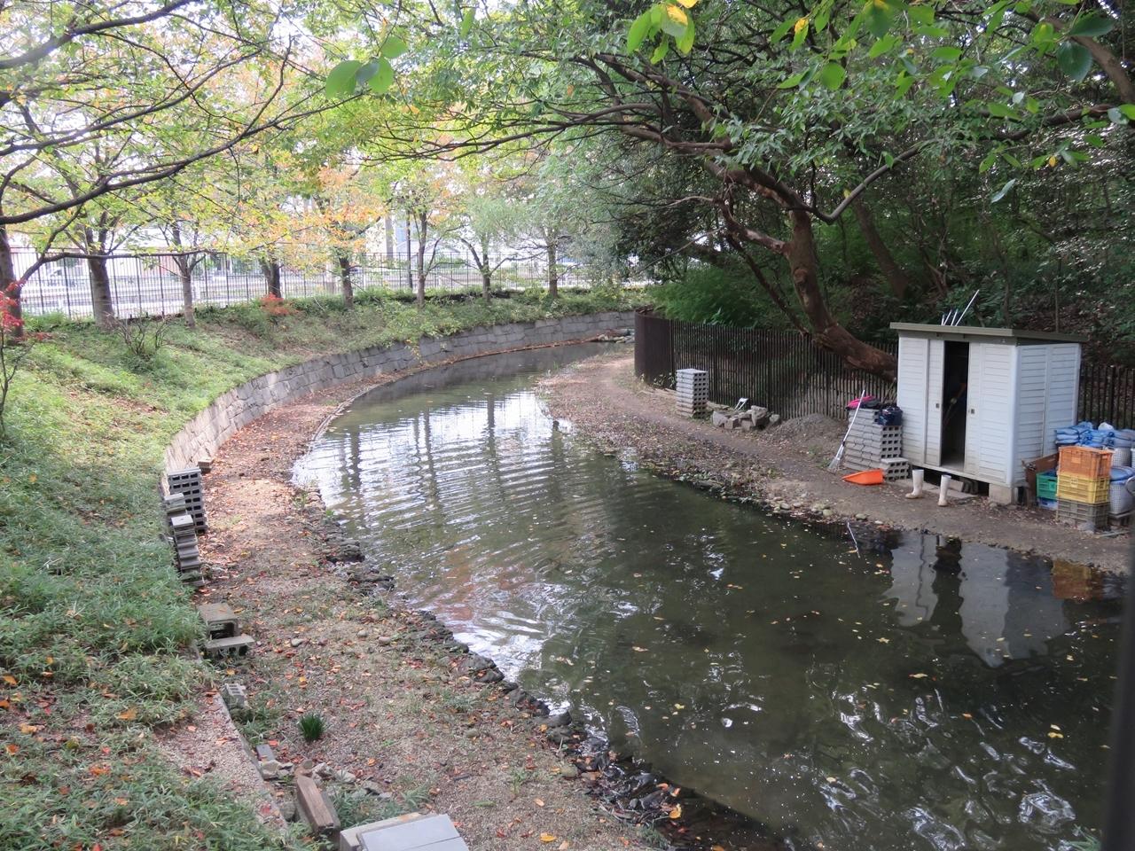 s-平野郷 191111