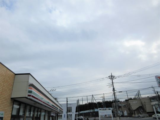 20_03_07-03yabitsu.jpg
