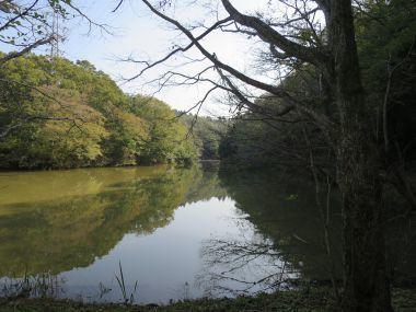泉自然公園2