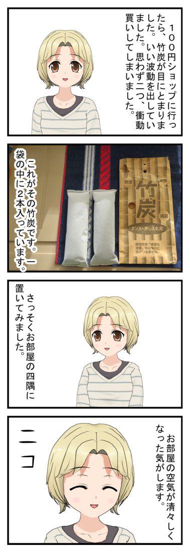 100円ショップの竹炭でイヤシロチ化
